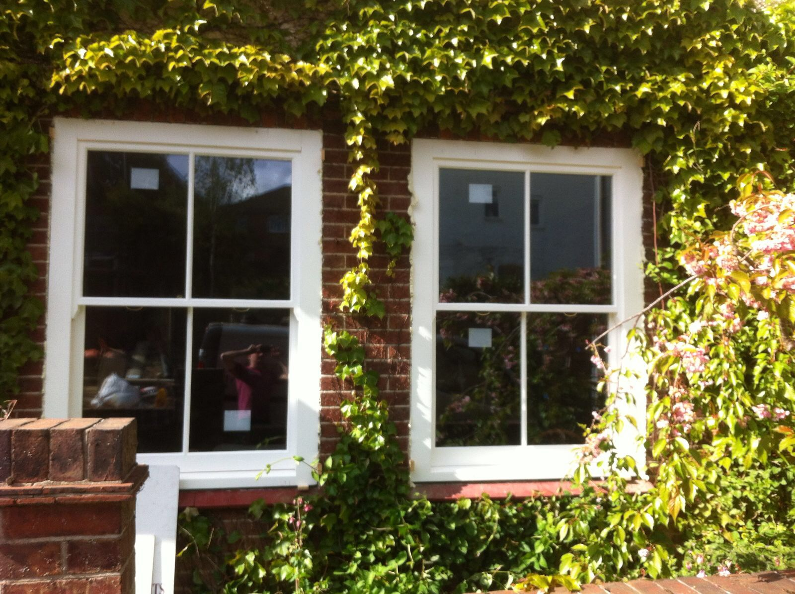 Box frame window - Tunbridge Wells